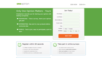 One Opinion Surveys